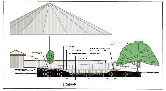 cheryl corson design: smithsonian national zoo rain garden